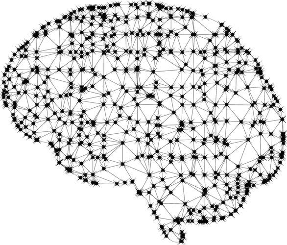 Image of brain showing interconnected latice