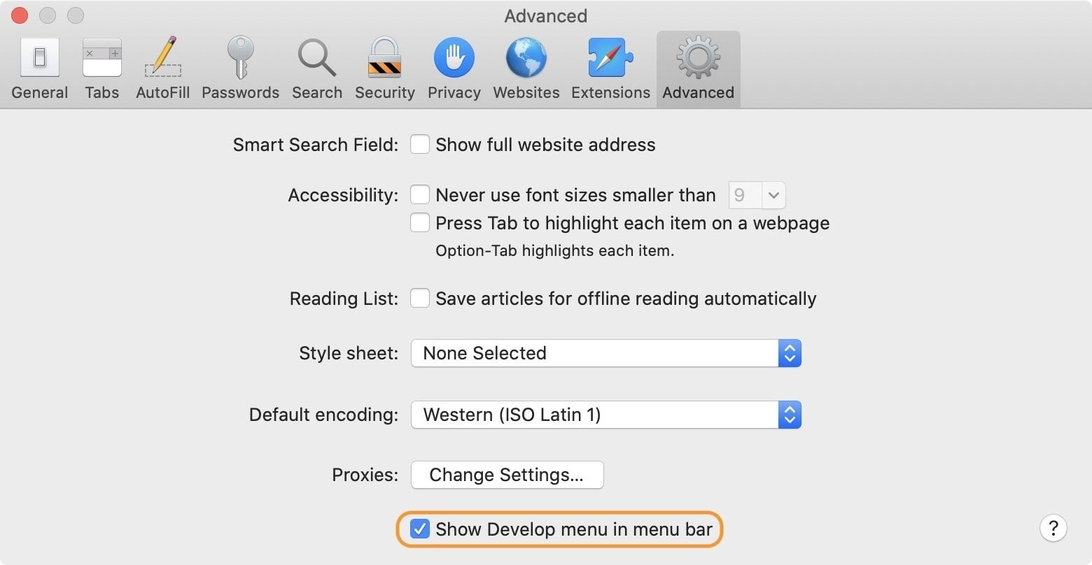Enable Develop Menu on Safari